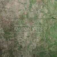 Фон FC-09 серо-зеленый полупрозрачный флизелин